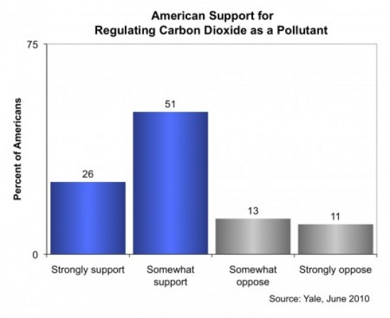 Image for Support for Regulating CO2 as a Pollutant
