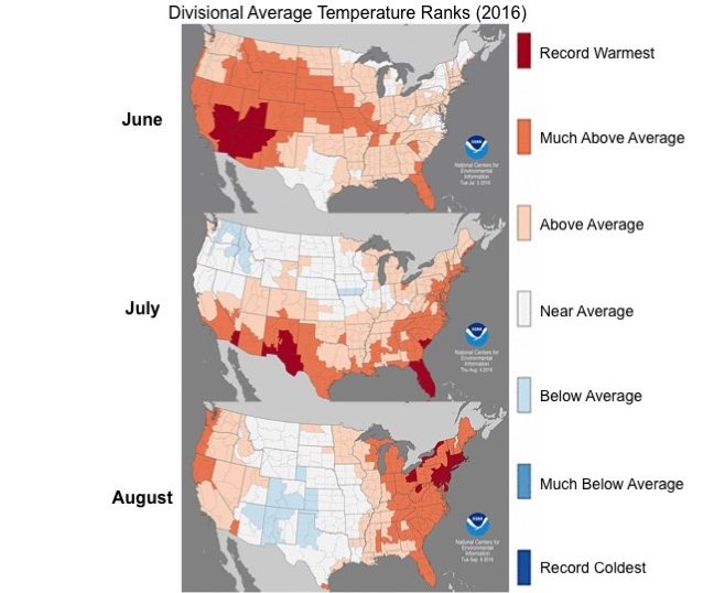 Data From The National Centers For Environmental Information Show Record Breaking Average Temperatures Across The United States Throughout Summer Of 2016
