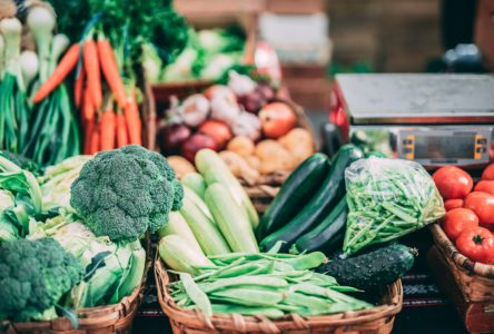Yale Students Report Willingness to Adopt More Sustainable Diets