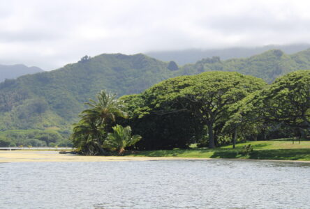Climate Change Threatens Tropical Coasts' Ability To Be Self-Sufficient